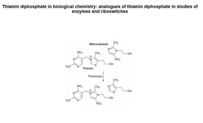 Thiamine-Metronidazole-Image(2)